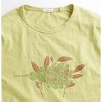 レミーラ ☆remilla (レミーラ) PLANTS WIND